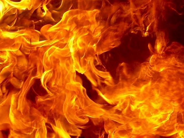 Виды огнезащитных составов